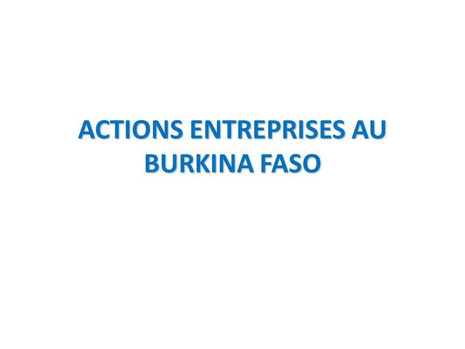 ACTIONS ENTREPRISES AU BURKINA FASO