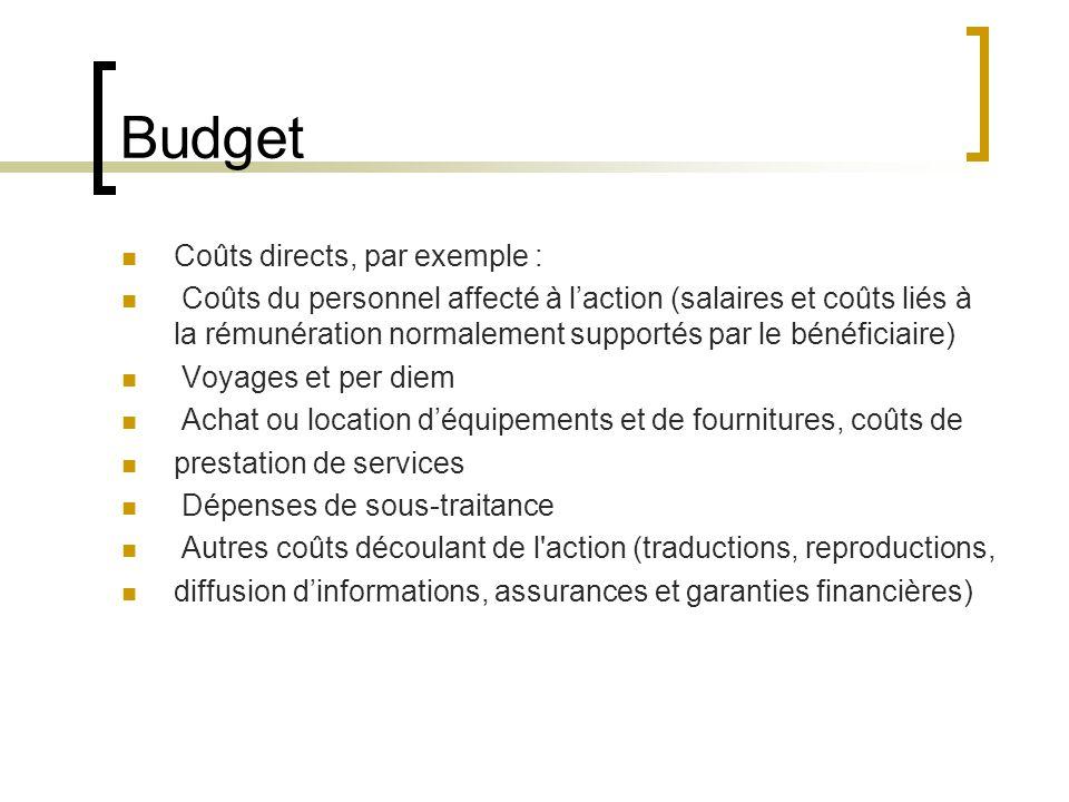 Budget Coûts directs, par exemple :