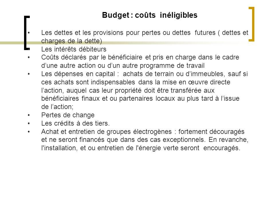 Budget : coûts inéligibles