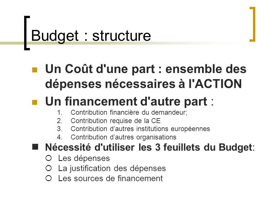 Budget : structure Un Coût d une part : ensemble des dépenses nécessaires à l ACTION. Un financement d autre part :