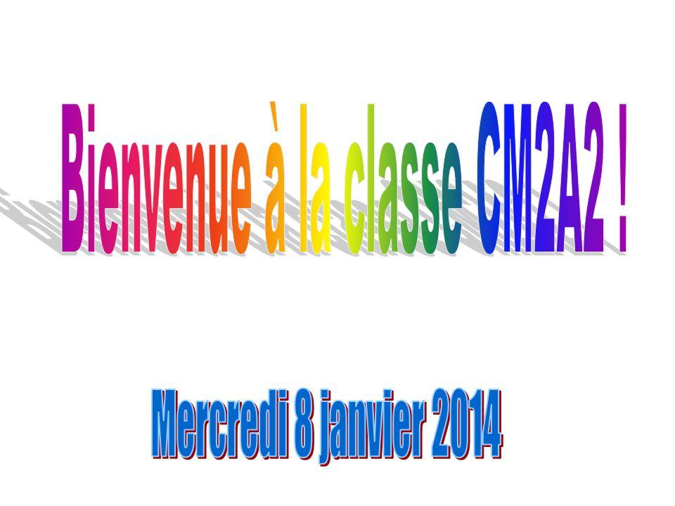 Bienvenue à la classe CM2A2 !