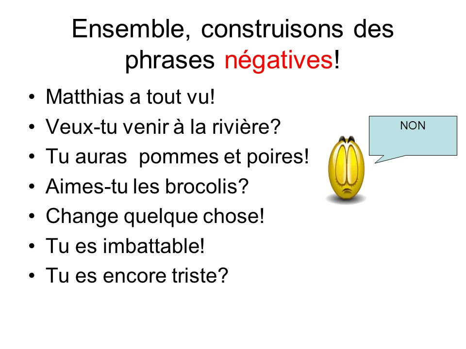 Ensemble, construisons des phrases négatives!