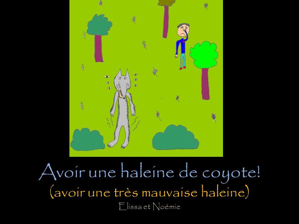 Avoir une haleine de coyote