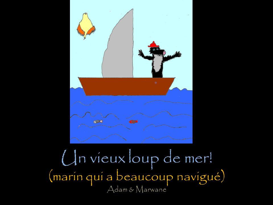 Un vieux loup de mer! (marin qui a beaucoup navigué) Adam & Marwane