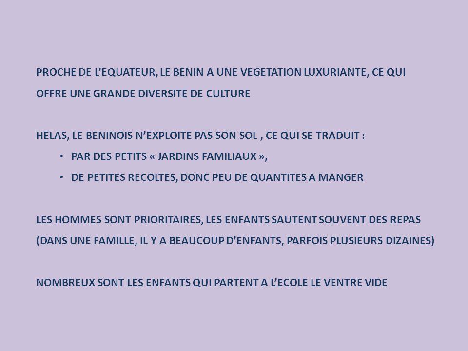 PROCHE DE L'EQUATEUR, LE BENIN A UNE VEGETATION LUXURIANTE, CE QUI OFFRE UNE GRANDE DIVERSITE DE CULTURE