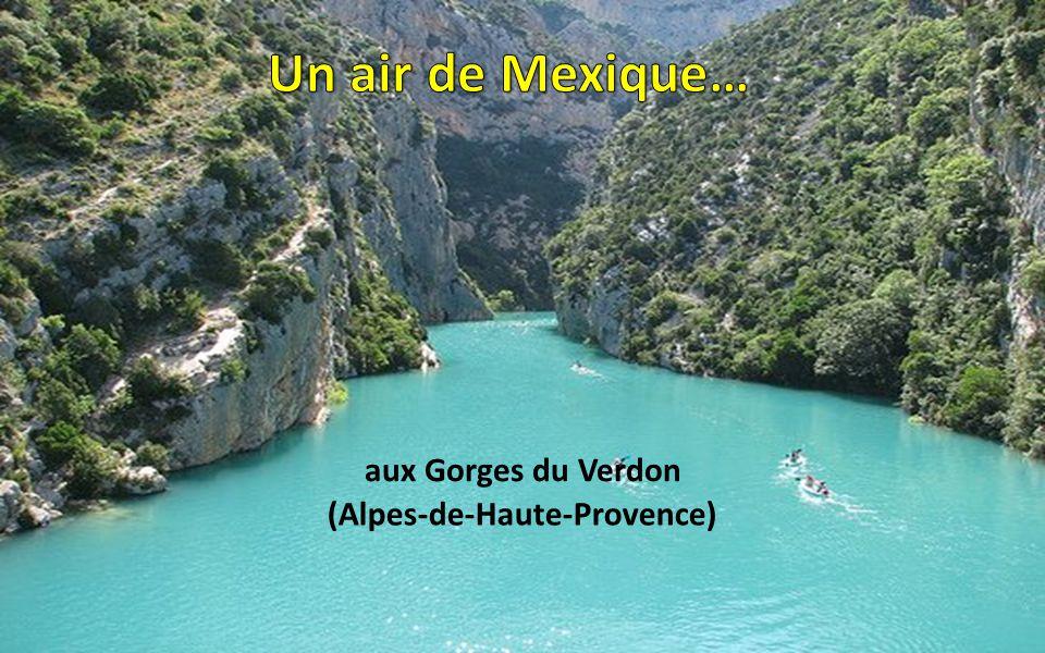 (Alpes-de-Haute-Provence)