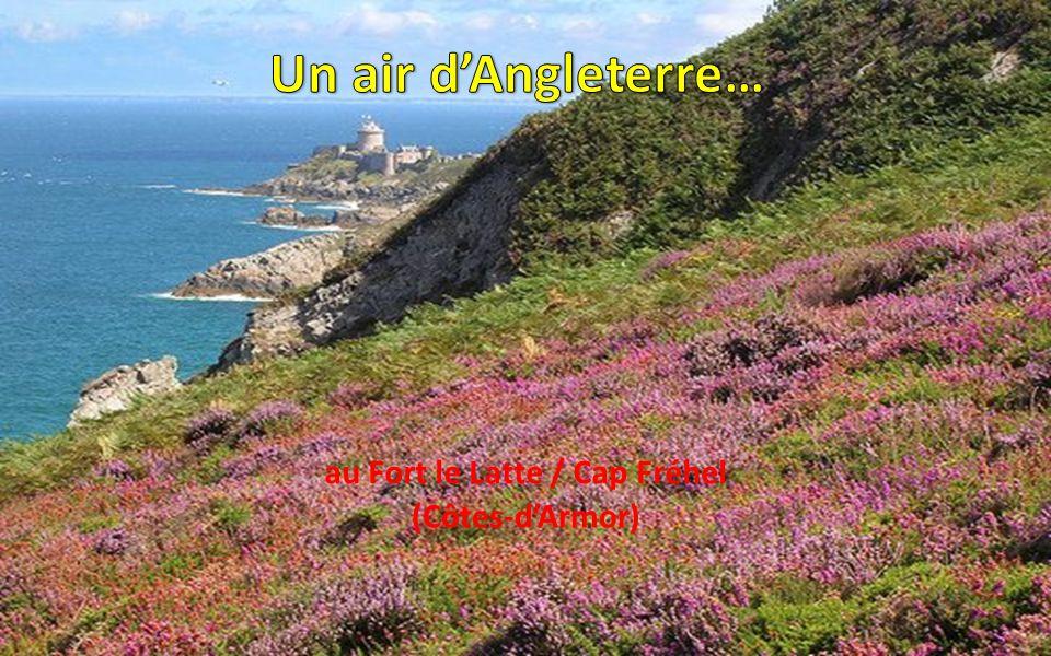 au Fort le Latte / Cap Fréhel