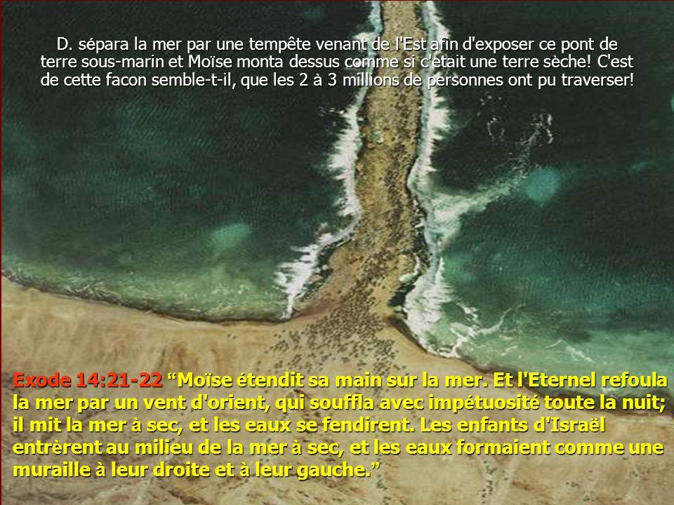 D. sépara la mer par une tempête venant de l Est afin d exposer ce pont de terre sous-marin et Moïse monta dessus comme si c etait une terre sèche! C est de cette facon semble-t-il, que les 2 à 3 millions de personnes ont pu traverser!