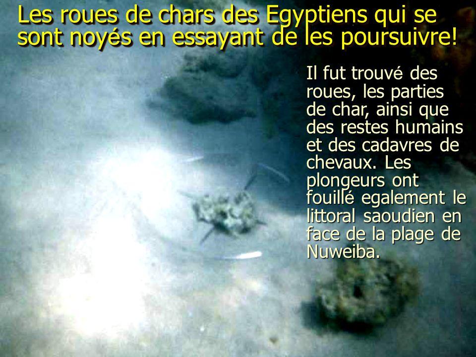 Les roues de chars des Egyptiens qui se sont noyés en essayant de les poursuivre!
