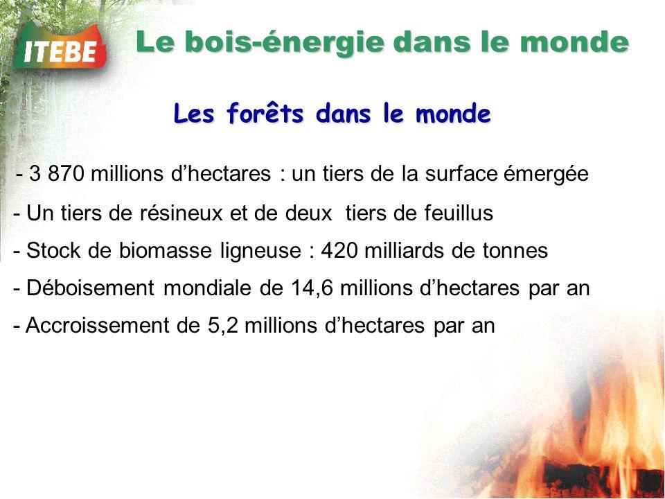 Le bois-énergie dans le monde