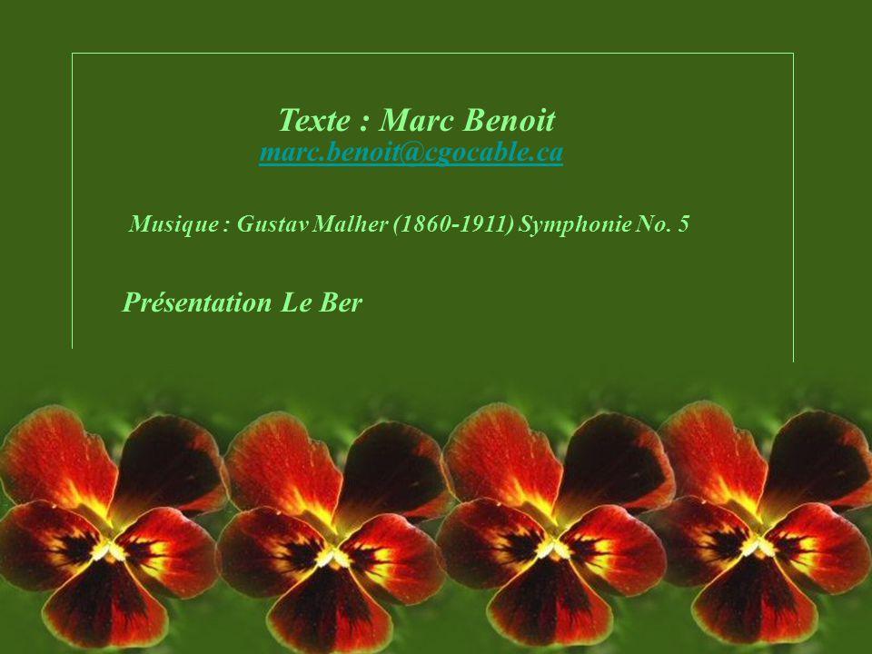 Texte : Marc Benoit marc.benoit@cgocable.ca Présentation Le Ber