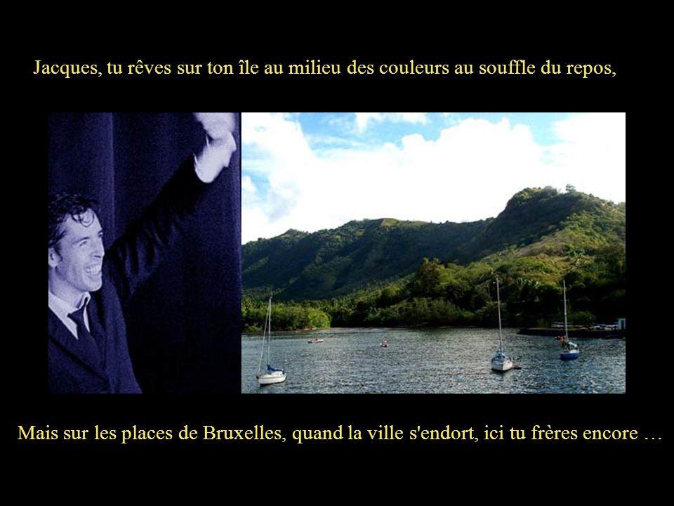 Jacques, tu rêves sur ton île au milieu des couleurs au souffle du repos,