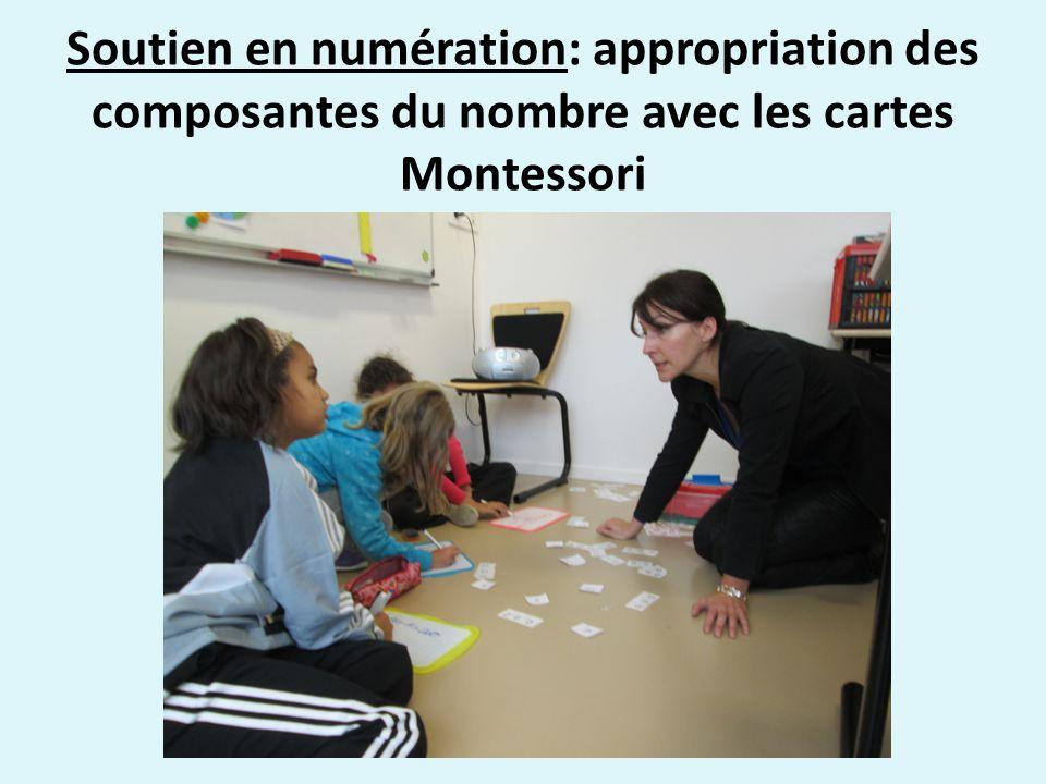 Soutien en numération: appropriation des composantes du nombre avec les cartes Montessori
