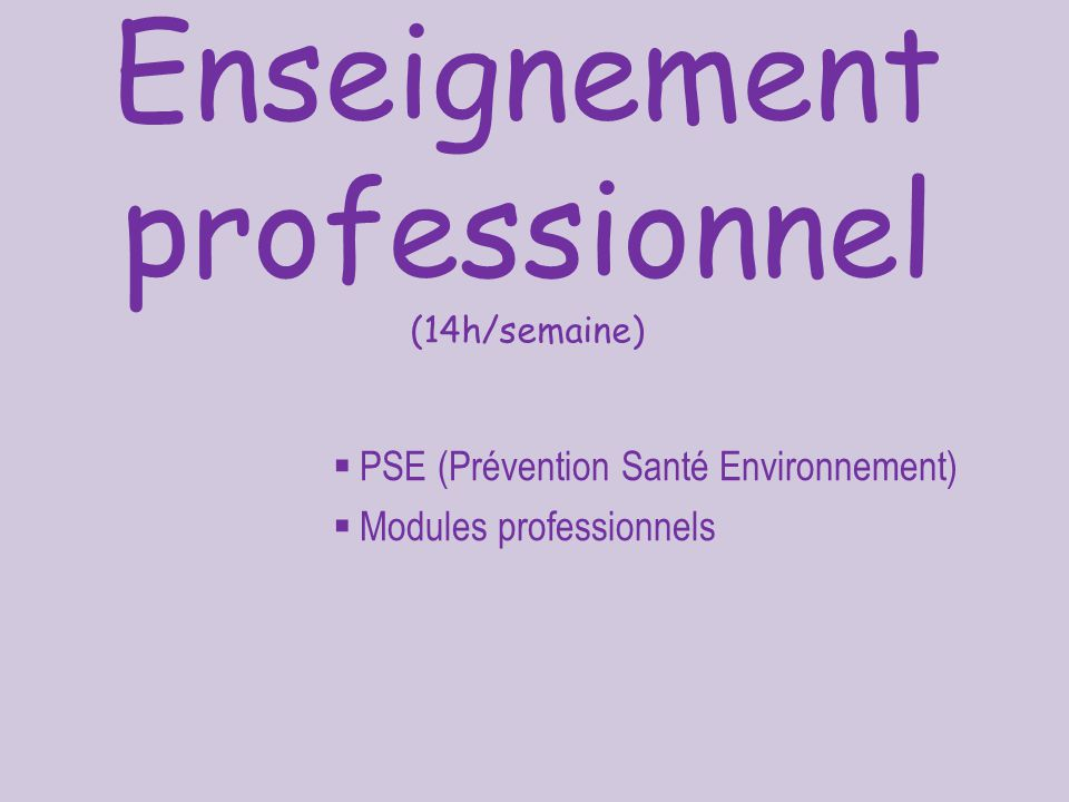 Enseignement professionnel (14h/semaine)