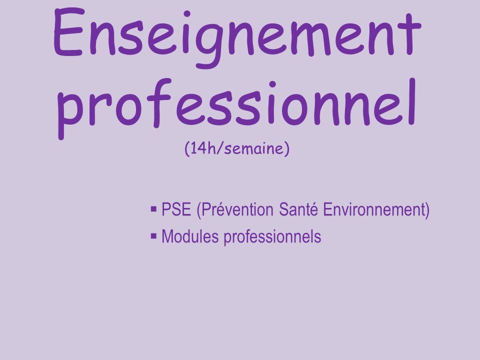 Enseignement professionnel (14h/semaine)