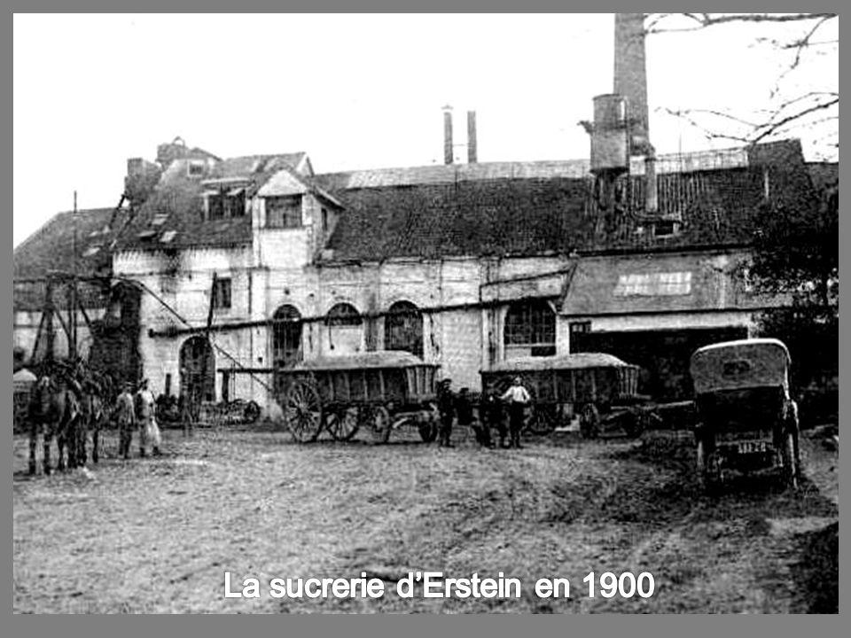 La sucrerie d'Erstein en 1900