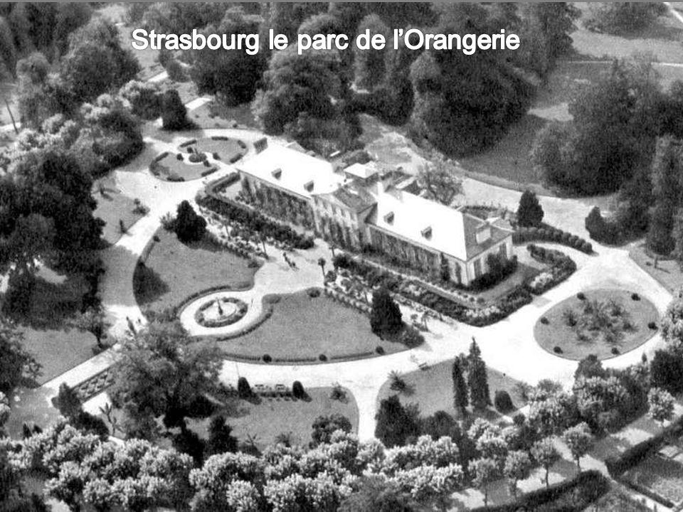 Strasbourg le parc de l'Orangerie