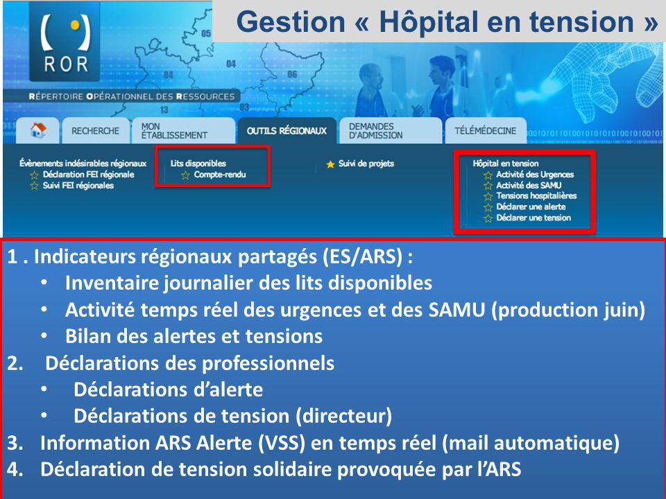 Gestion « Hôpital en tension »