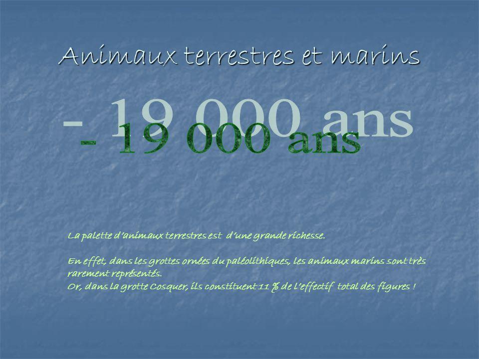 Animaux terrestres et marins