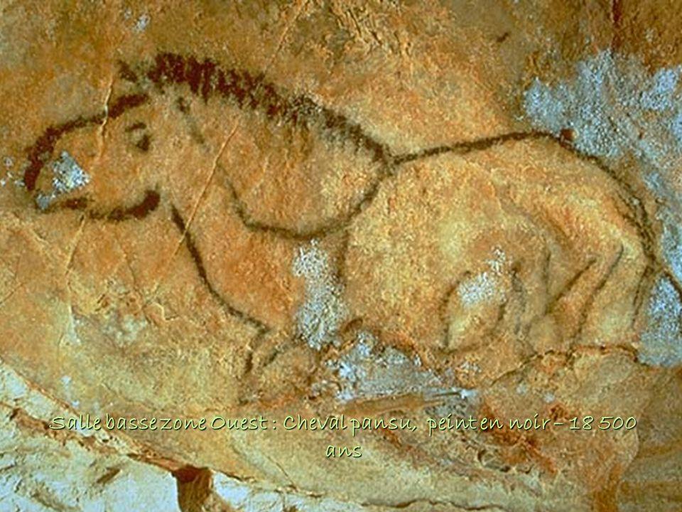 Salle basse zone Ouest : Cheval pansu, peint en noir – 18 500 ans