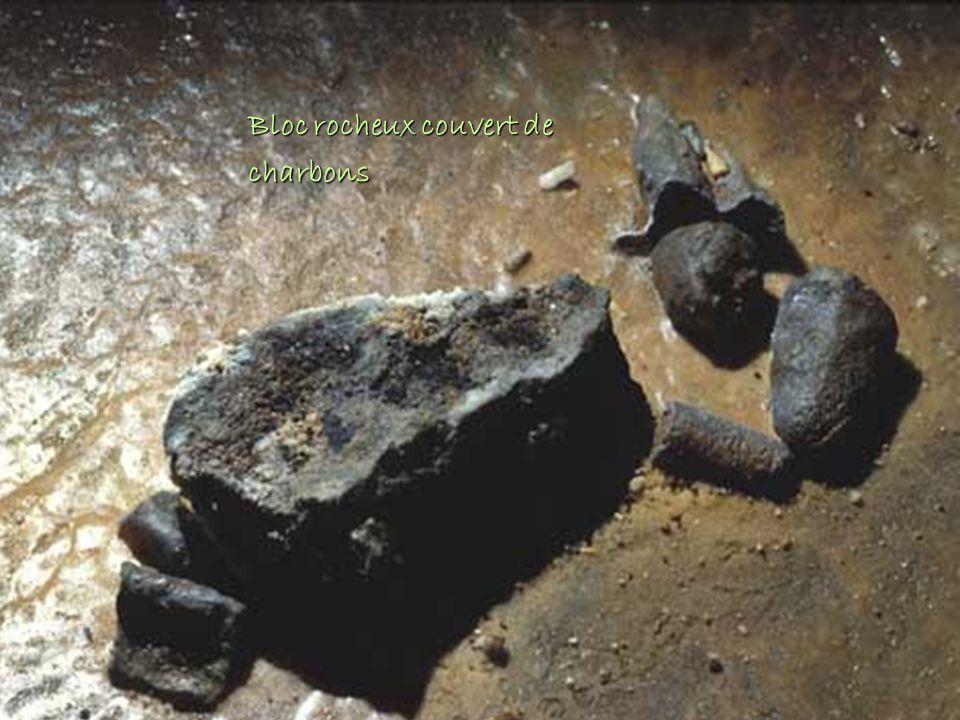 Bloc rocheux couvert de charbons
