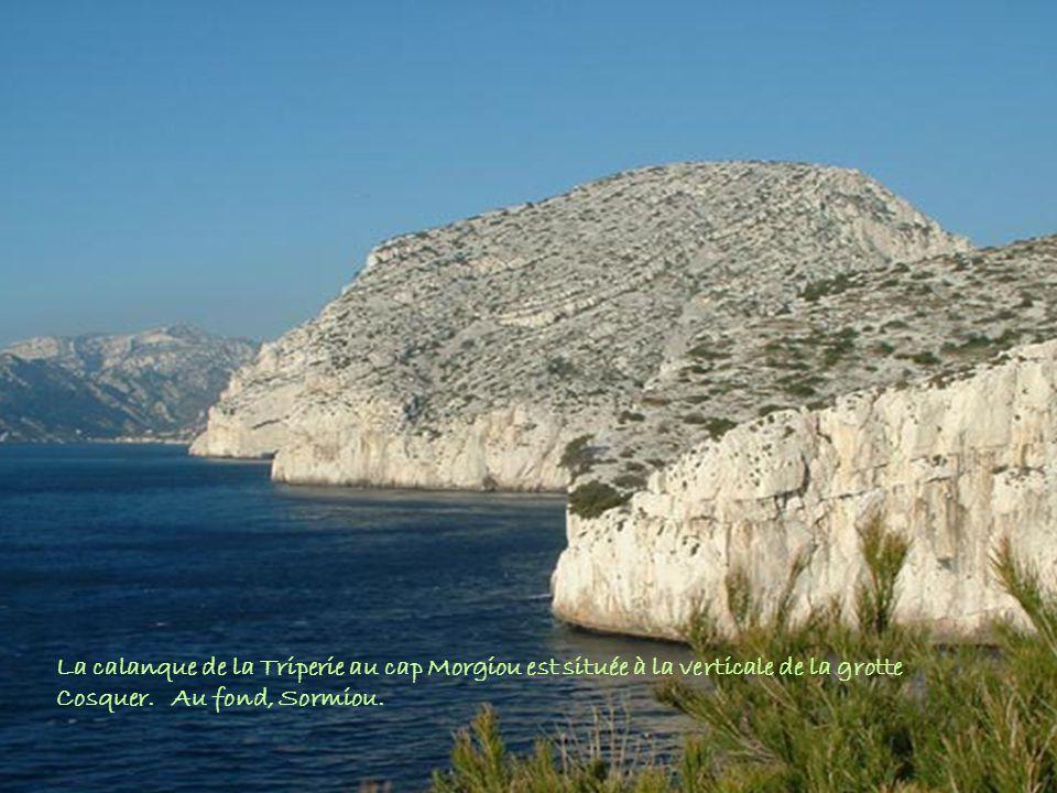 La calanque de la Triperie au cap Morgiou est située à la verticale de la grotte Cosquer.