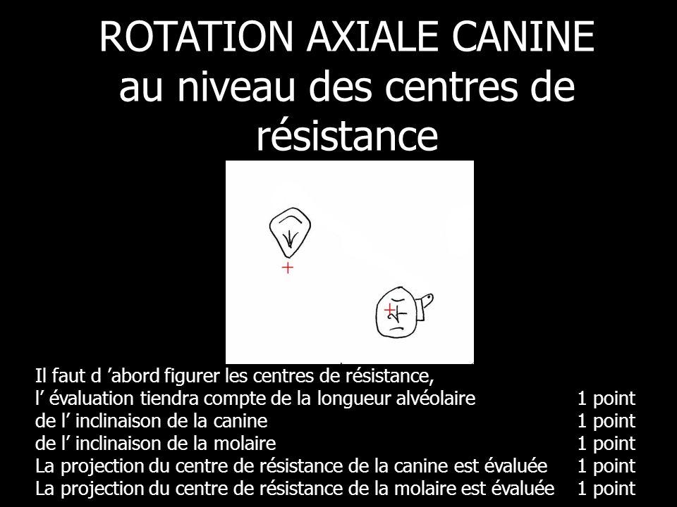 ROTATION AXIALE CANINE au niveau des centres de résistance