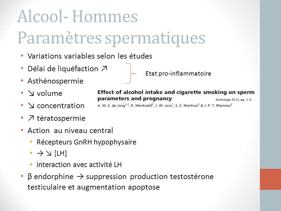 Alcool- Hommes Paramètres spermatiques