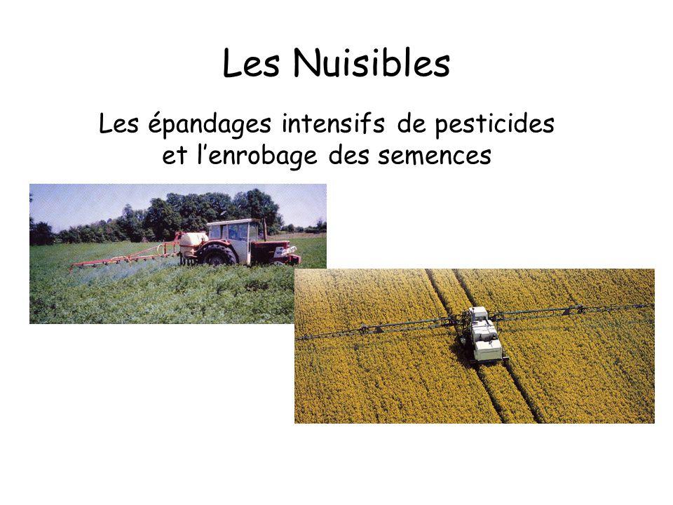 Les épandages intensifs de pesticides et l'enrobage des semences