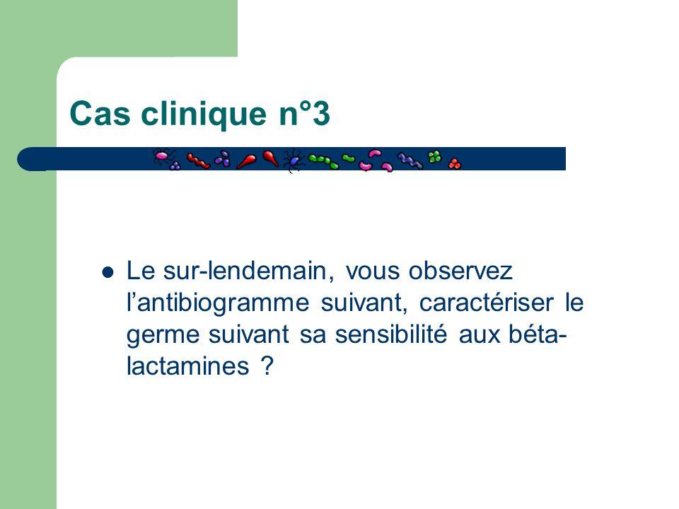 Cas clinique n°3 Le sur-lendemain, vous observez l'antibiogramme suivant, caractériser le germe suivant sa sensibilité aux béta-lactamines