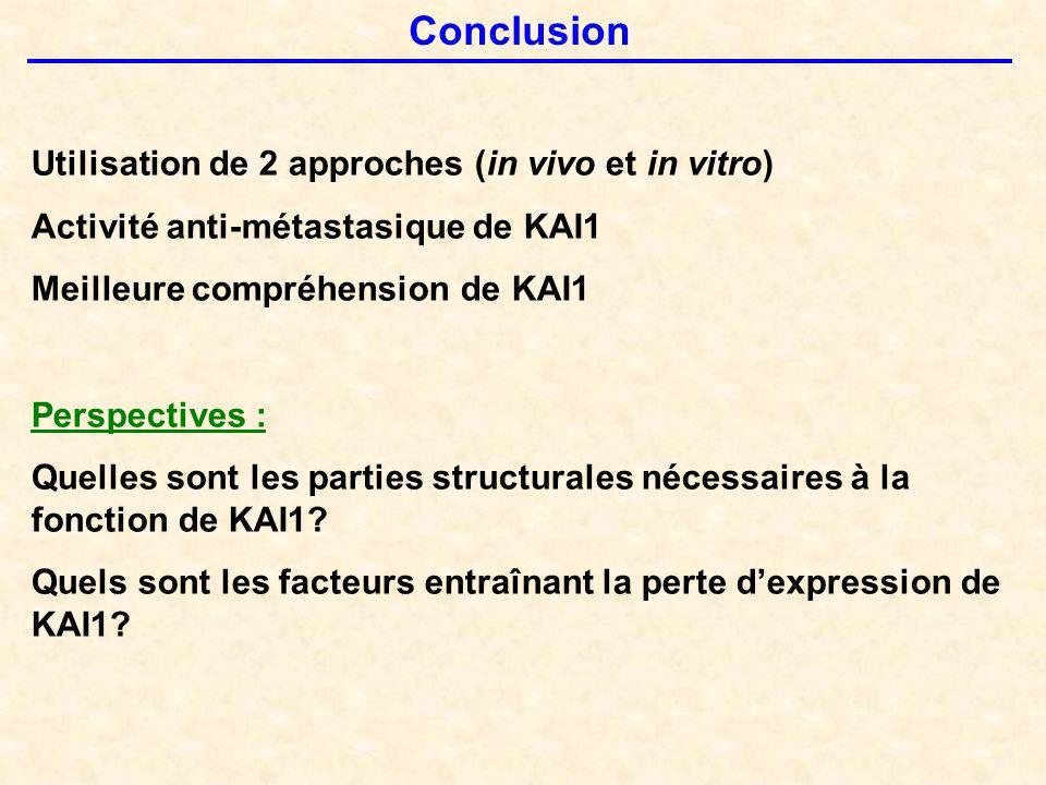 Conclusion Utilisation de 2 approches (in vivo et in vitro)