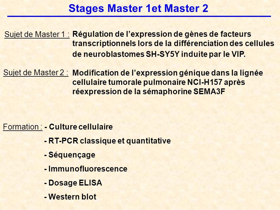 Stages Master 1et Master 2