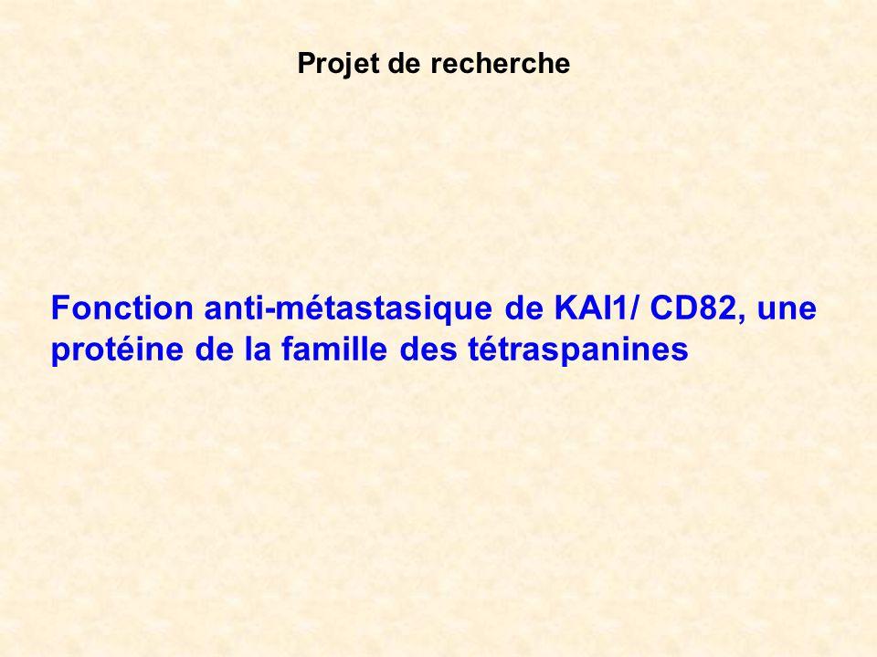 Projet de recherche Fonction anti-métastasique de KAI1/ CD82, une protéine de la famille des tétraspanines.