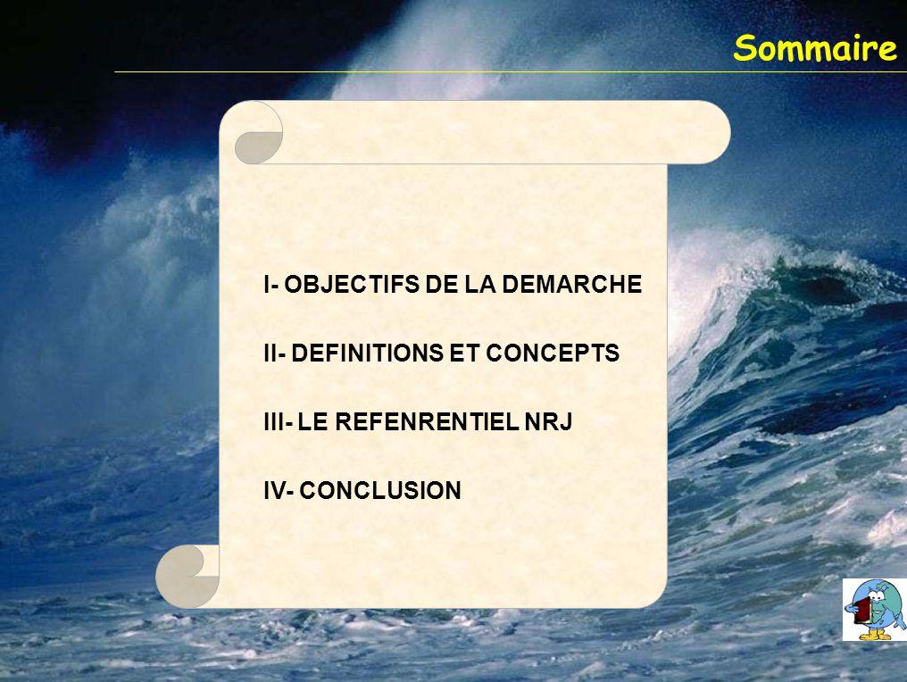 Sommaire I- OBJECTIFS DE LA DEMARCHE II- DEFINITIONS ET CONCEPTS