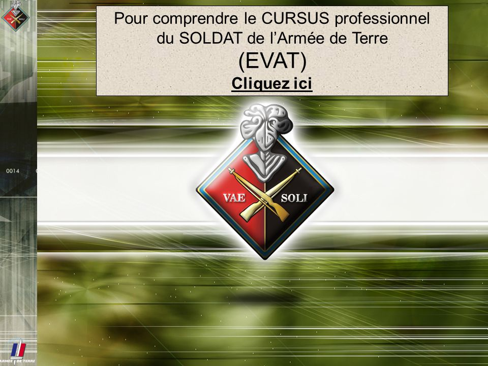 (EVAT) Pour comprendre le CURSUS professionnel