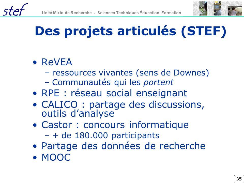 Des projets articulés (STEF)