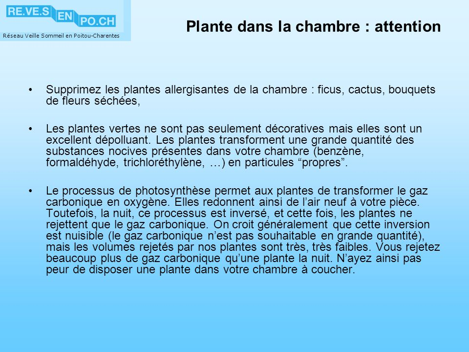 Plante dans la chambre : attention