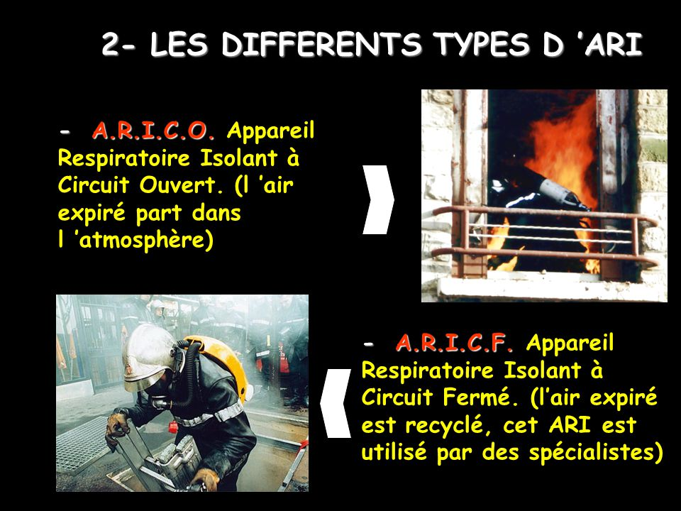 2- LES DIFFERENTS TYPES D 'ARI