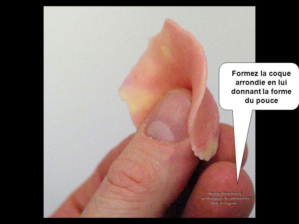Formez la coque arrondie en lui donnant la forme du pouce
