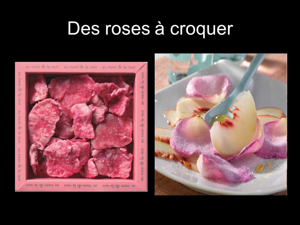 Des roses à croquer