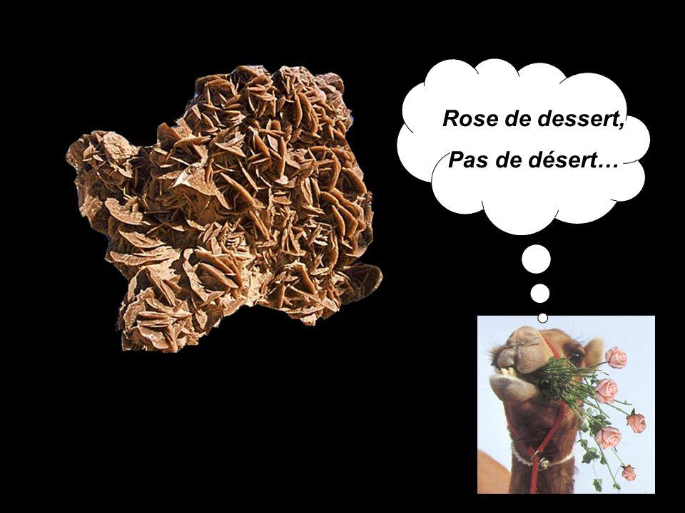Rose de dessert, Pas de désert…