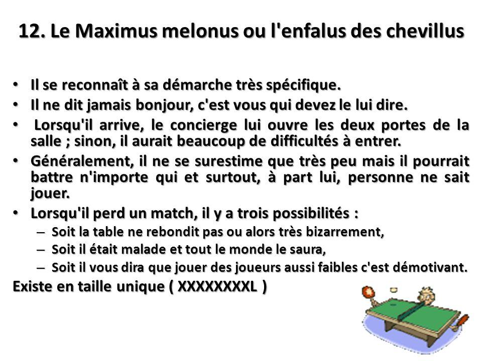 12. Le Maximus melonus ou l enfalus des chevillus