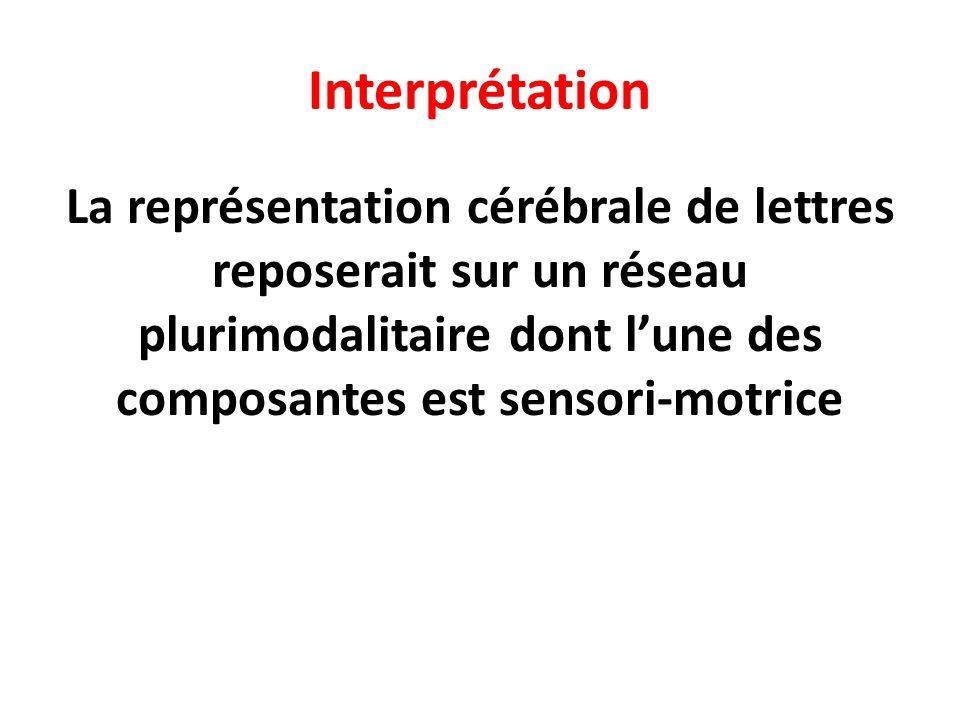 Interprétation La représentation cérébrale de lettres reposerait sur un réseau plurimodalitaire dont l'une des composantes est sensori-motrice.