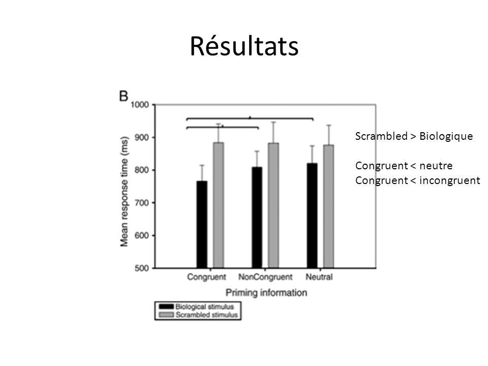 Résultats Scrambled > Biologique Congruent < neutre