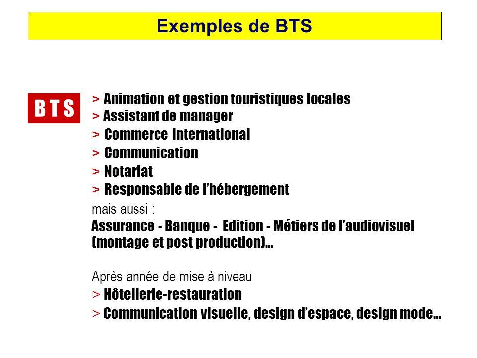 B T S Exemples de BTS > Animation et gestion touristiques locales