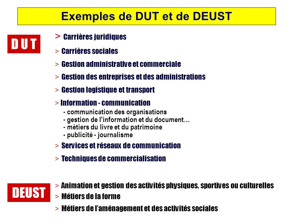 Exemples de DUT et de DEUST