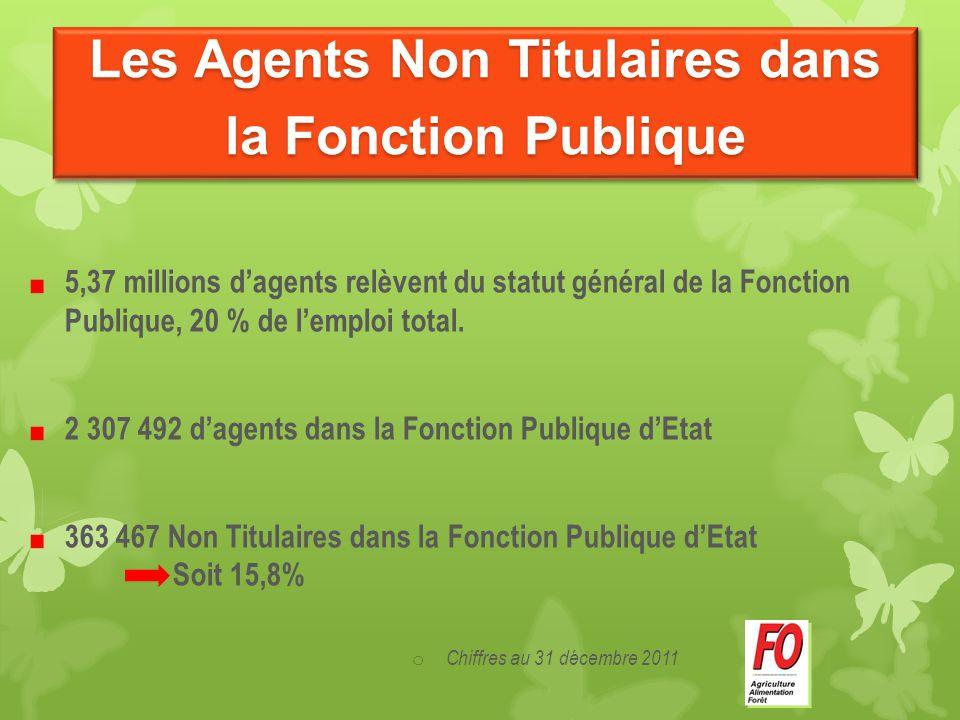 Les Agents Non Titulaires dans la Fonction Publique