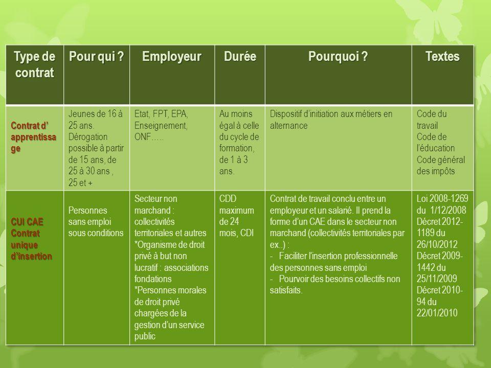 Type de contrat Pour qui Employeur Durée Pourquoi Textes