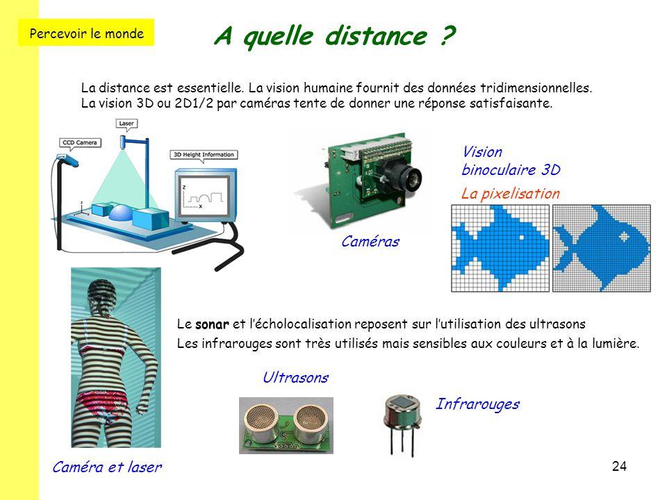 A quelle distance Percevoir le monde Vision binoculaire 3D