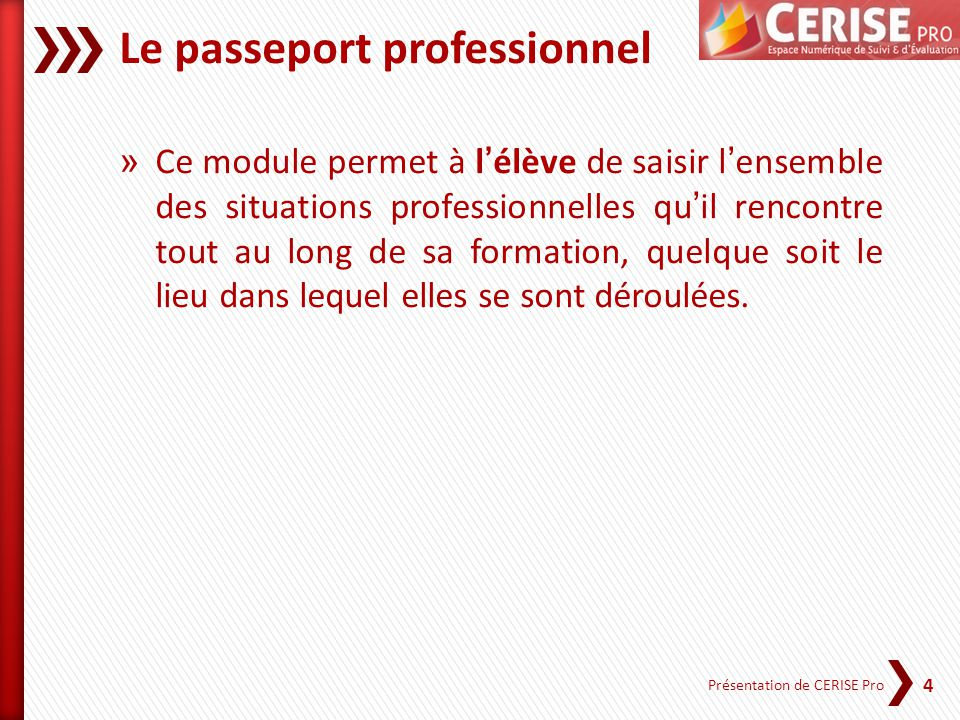 Le passeport professionnel